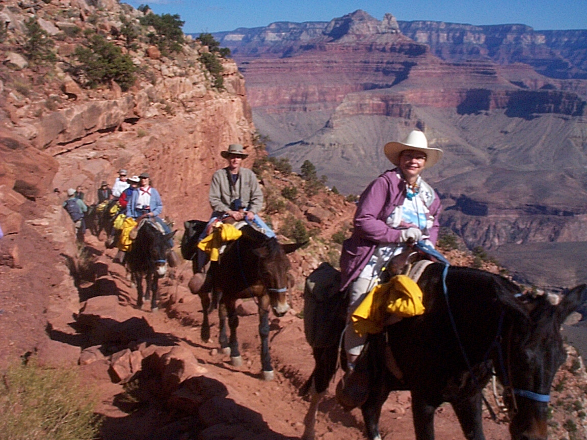 North Ridge Tours To The Bottom Of Grand Canyon